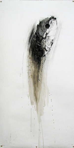 sally simpson mummified fish drawing 01 lr
